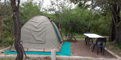 6-Day Bushveld Course and Safari