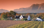 10-Day South Africa's Wines & Whales - at Your Own Pace