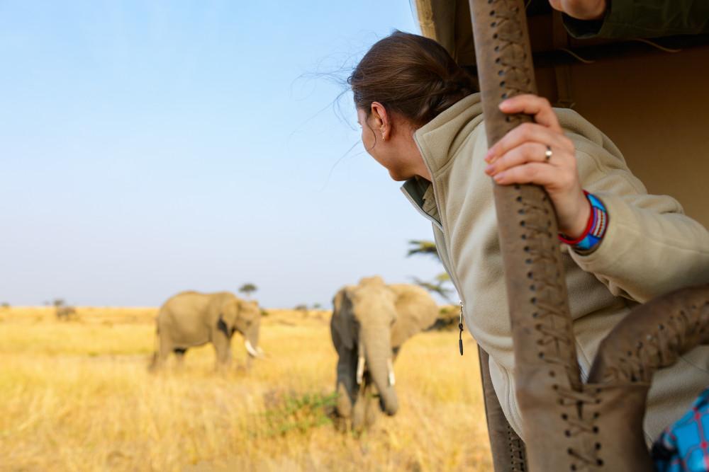 Sabi Sands Kruger Experience