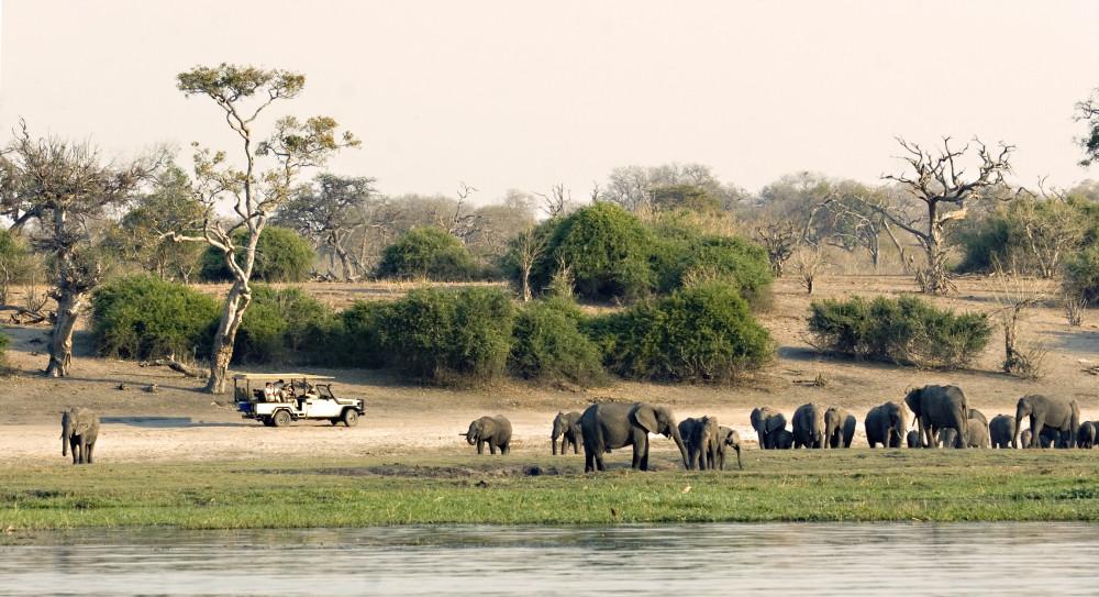 Makgadikgadi, Moremi, Okavango + Chobe