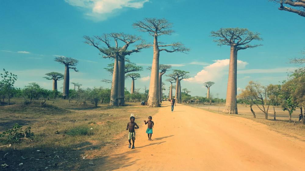 Madagascar - off the Beaten Track