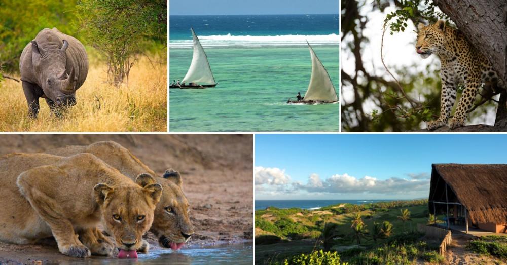 Self-Drive Jo'Burg, Kruger & Tropical Mozambique