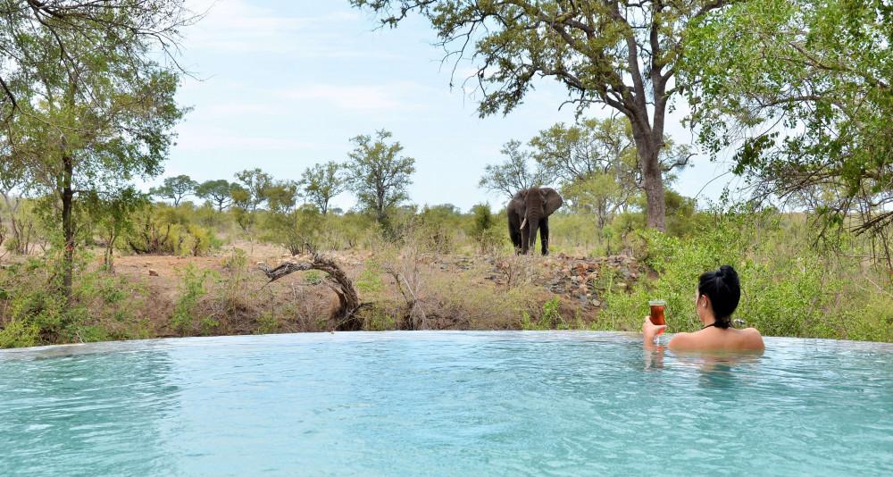 Hoyo Hoyo Safari Lodge - Kruger National Park