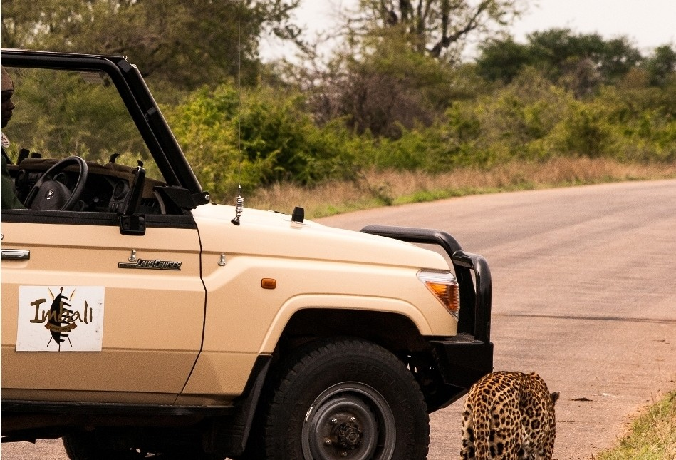 Imbali Safari Lodge 1 Night