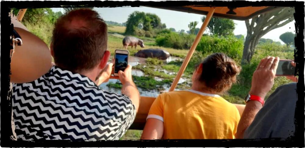 Kibale & Queen Elizabeth National Parks Safari