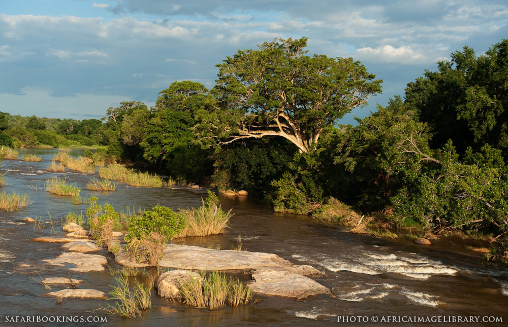National Geographic Tours Africa >> Kruger National Park – Travel Guide, Map & More!