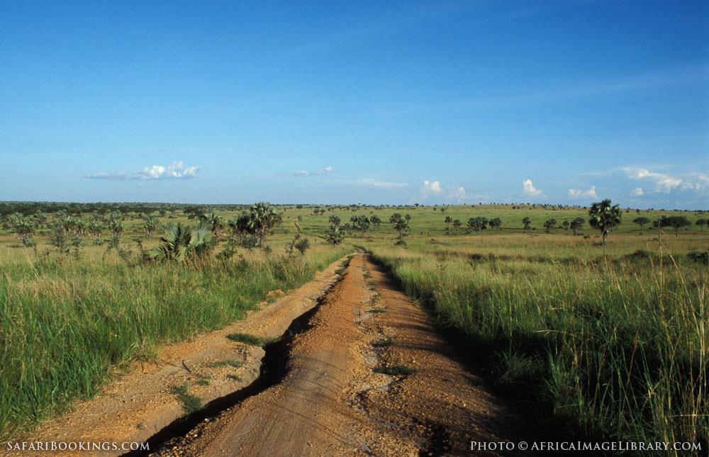Eroded road in Murchison Falls National Park, Uganda