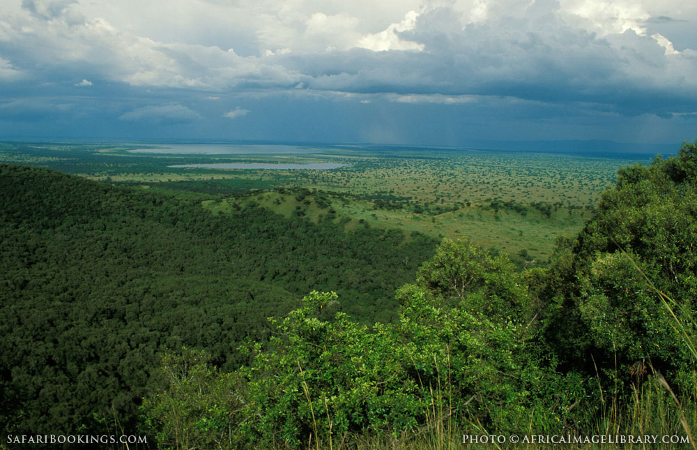Forested volcanic crater on the crater track with Lake George in the background in Queen Elizabeth National Park, Uganda
