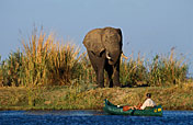 Lower Zambezi NP Photos