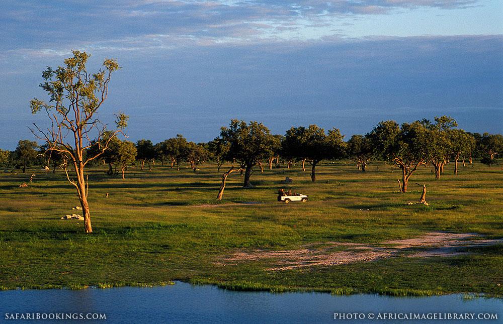 Game drive in Hwange National Park, Zimbabwe