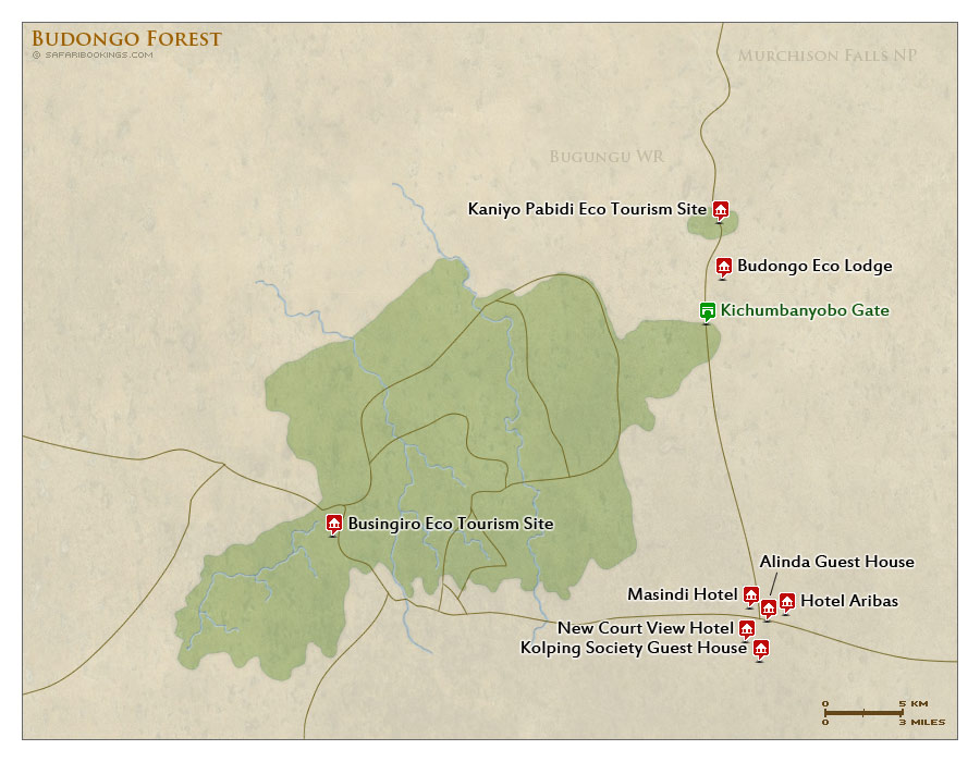 Detailed Map of Budongo Forest