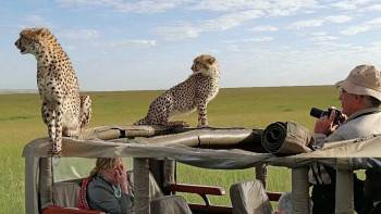 Kenya tailor made holiday culture, nature & wild