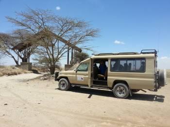 Safari Big 5