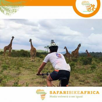 Bike safaris between volcanoes giraffes and zebras