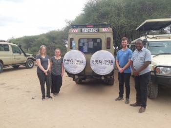 Fig Tree Tours and travel Photo