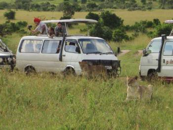 Sana Adventures & Safaris Photo