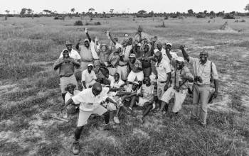 African Bush Camps Photo