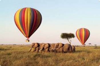 Balloon Safari in Maasai Mara-Kenya