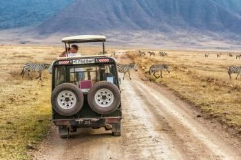 Bimos Tanzania safari in Tarangire National park