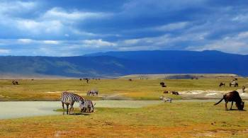 Spoil Yourself in the Ngorogoro Crater