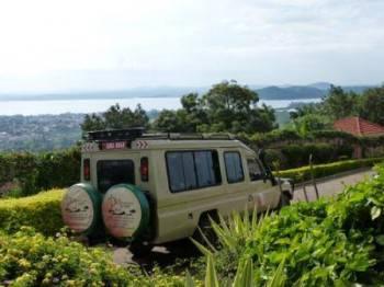 Destination Jungle Vehicle