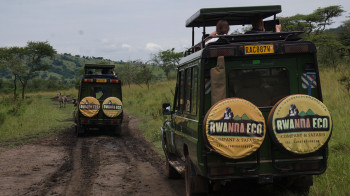 Rwanda Eco Company and Safaris Photo