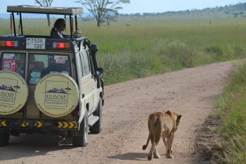 Kilidove Tours and Safaris Photo