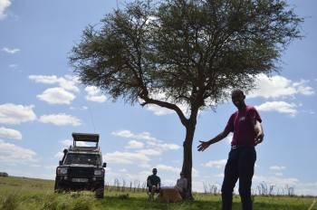 Bush lunch in Maasai Mara National Reserve