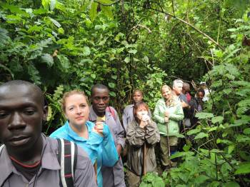 Our guests trekking gorillas in Bwindi Forest
