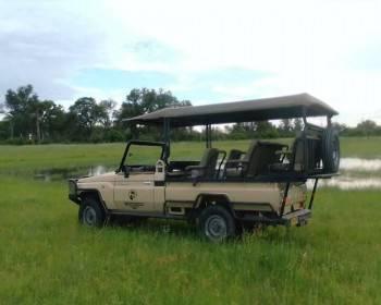 Action Adventure Safaris
