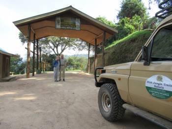 Wild Jungle Trails Photo