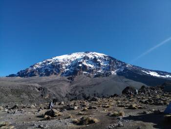 Climb Kilimanjaro with Local tour operator