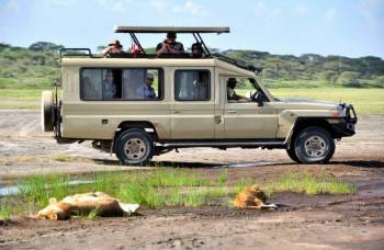 Kihindo Tours and Safaris Photo
