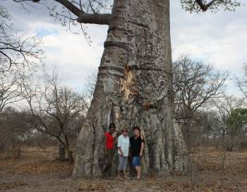 Our team under a baobab tree in south Luangwa
