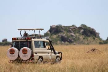 Hazina Afrika Photo