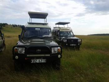 We only use 4x4 safari landcruiser for our safaris
