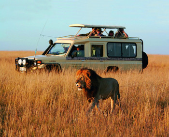 Kikore Safaris and Trekking Ltd Photo
