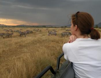 Migo African Safaris and Tours Ltd