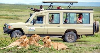 Authentic Africa Safari experience Tanzania
