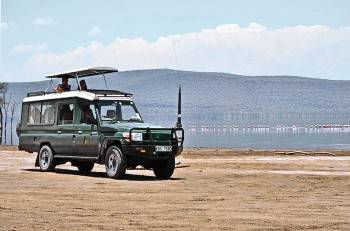 Some of our happy clients on safari in Lake Nakuru