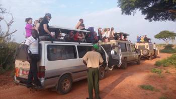Pamoja Tours 4x4 fleet compatible for a Game drive