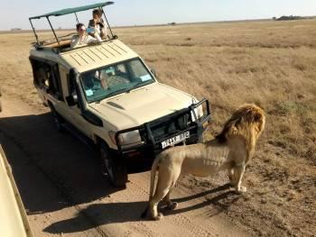 Tanzania Exclusive Journeys Photo