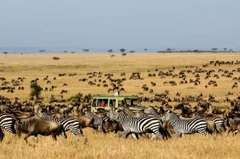 Regional Tours & Safaris Ltd Photo
