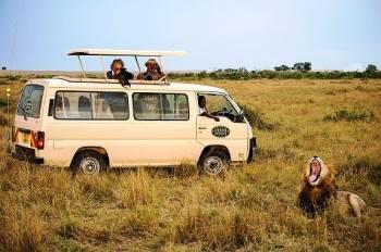 Shoor Safaris  Photo