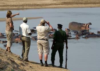 Walking Safari - the South Luangwa National Park