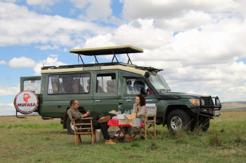 Safaris and hotel booking specialist
